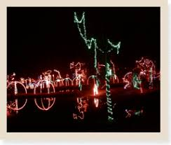 holiday lights tours silverfox limos