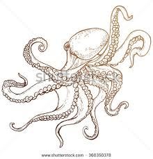 stylized underwater octopus poulpe cuttlefish squid stock vector