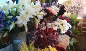Wholesale Flowers Near Me N S Flowers Wholesalers Of Fresh And Artificial Flowers