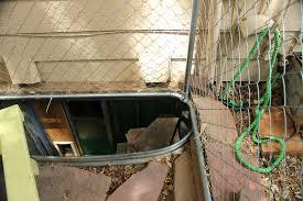 smartness ideas basement window cat door framing windows