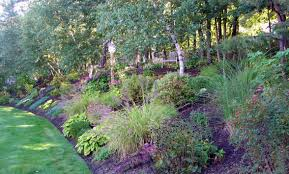 Landscaping Ideas For A Sloped Backyard Summers End In New England Great Choices Of Shrubs And Grasses