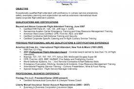 Resume Samples For Flight Attendant Position by Sample Flight Nurse Resume Mfacourses399webfc2com Flight Medic