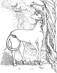 realistic unicorn coloring pages coloring pages middle free
