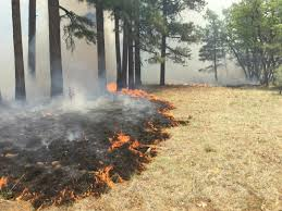 Wildfire Arizona Golf by Jack Fire Grows To 14 000 Acres 3tv Cbs 5