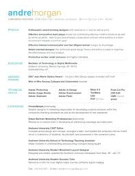 simple resume objective samples catchy resume objectives examples