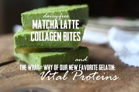 Vital Proteins Collagen My Best New Gelatin Friend Vital Proteins