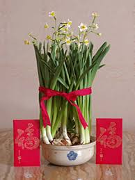 Lunar New Year Home Decorations by Feng Shui Home Chinese New Year Decorations