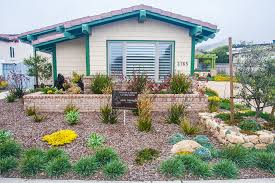 decorating drought tolerant landscaping starting drought