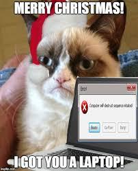 Christmas Grumpy Cat Meme - grumpy cat imgflip