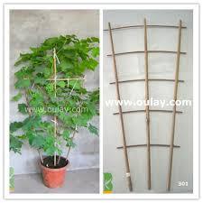 Grape Trellis For Sale Plant Pot Trellis Plant Pot Trellis Suppliers And Manufacturers