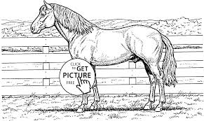 wild horse coloring page for kids animal coloring pages