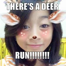 Internet Memes Wiki - there s a deer run moist memes wiki fandom powered by wikia
