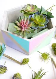 diy planter ideas color blocked succulent planter crafts unleashed