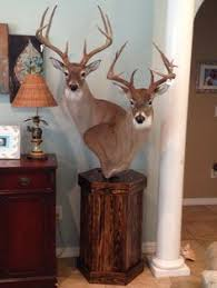 Deer Pedestal Floor Mount Taxidermy Pedestal For White Tail Buck Custom