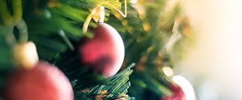 Decorated Christmas Trees Delivered by Christmas Tree Hire Melbourne By Christmas Trees Delivered
