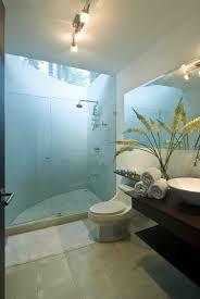 Coastal Bathroom Ideas by Tropical Themed Bathroom Ideas Brightpulse Us