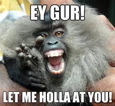Funny Monkey Memes - latest funny monkey memes pics wishmeme