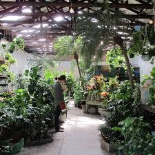 290 best garden retail images on pinterest garden centre retail