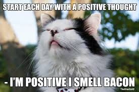Positive Memes - think positive album on imgur