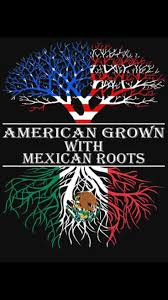 Italian And Mexican Flag Best 25 Mexican American Ideas On Pinterest Mexican American