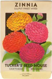 flower seed packets zinnia lilliput finest mixed vintage flower seed packet