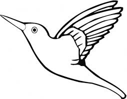 100 cardinal coloring pages cardinal pictures to color virtren