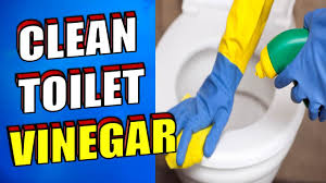 how to clean shower glass doors with vinegar how to clean a toilet with vinegar youtube