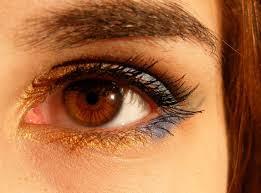 How To Make Eyebrows Grow Back Fast Grow Your Eyebrows Articles And Advice On Growing Eyebrows Fast