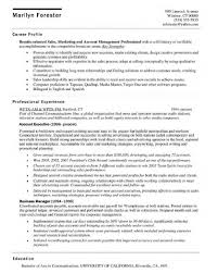 Channel Sales Manager Resume Sample by Account Executive Resume Berathen Com
