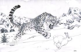 snow leopard by smashed head on deviantart