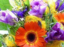 fresh flowers flowers fresh flowers