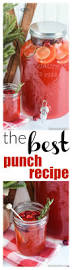 best 25 easy punch recipes ideas on pinterest pineapple punch