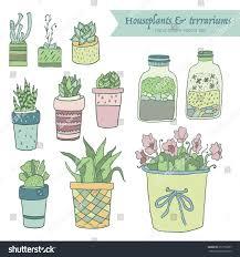 Cute Succulent Pots Cute Hand Drawn Terrariums Houseplants Succulents Stock Vector