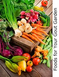 good foods for your gout garden brought to you by the gout killer