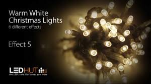 white christmas lights led christmas lights warm white