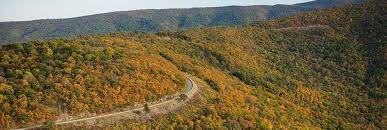 fall foliage report virginia lovers