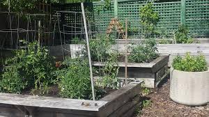 Creative Vegetable Gardens by Creative Vegetable Garden Ideas Goodmotherdiet