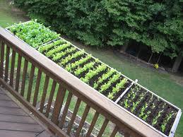 deck container gardening ideas