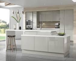 Light Gray Kitchens Couleur Pour Cuisine 105 Idées De Peinture Murale Et Façade