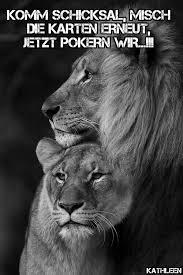 sprüche löwe die besten 25 king zitate ideen auf der könig