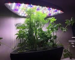 Grow Lights For Indoor Herb Garden - 5 best budget indoor hydroponics kits for growing your home herb