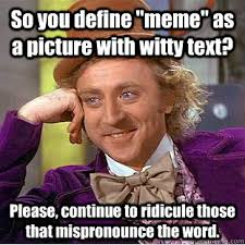 Define A Meme - so you define meme as a picture with witty text please