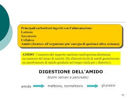 alimenti ricchi di glucidi glucidi negli alimenti ppt scaricare