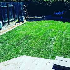Wildfire Chicago Yelp by Royal Landscaping 17 Photos Landscaping Citrus Heights Ca