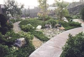 Drought Tolerant Landscaping Ideas Indoor Gardening
