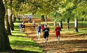 in the park boosts energy and improves mood more than