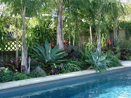landscaping around pools design home ideas pictures homecolors