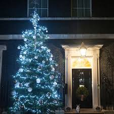 larry the cat claims festive spot under downing street christmas tree