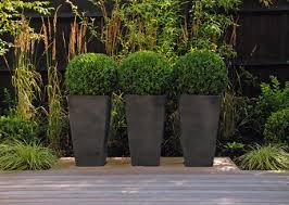 what size pot what size plant plants contemporary planters