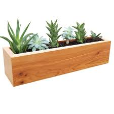 Concrete Planter Boxes by 4 In X 4 In X 16 In Succulent Planter Wood Rectangular Natural